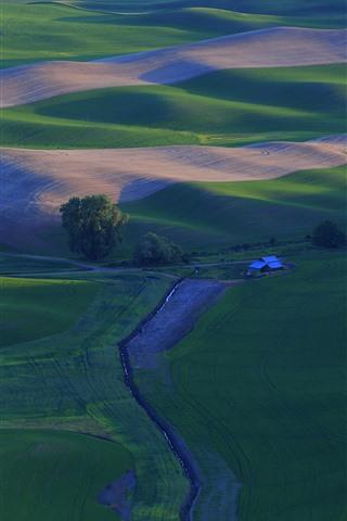 iPhone Fondos de pantalla Hermoso campo, campos de trigo verde, Palouse, EE.UU.