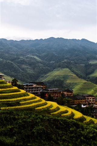 iPhone Fondos de pantalla Hermoso campo, mañana, niebla, terrazas de arroz Longji, Guilin, China