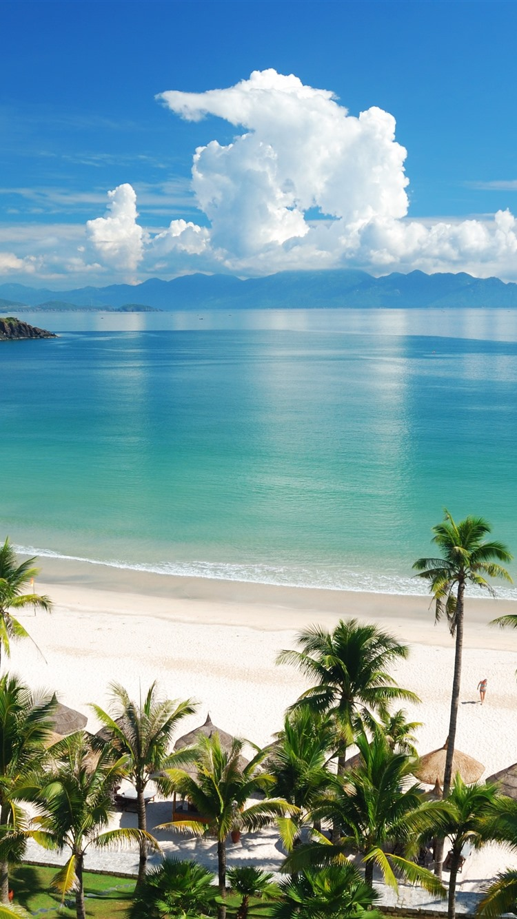 Wallpaper beautiful tropical landscape beach sea palm trees summer 3840x2160 uhd 4k picture - Palm tree wallpaper for android ...