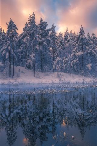 iPhone Fondos de pantalla Hermoso paisaje natural de invierno, árboles, nieve, río, atardecer.