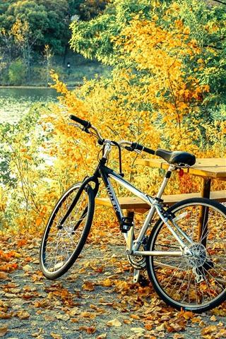 iPhone Fondos de pantalla Bicicleta, mesa, árboles, hojas, otoño.