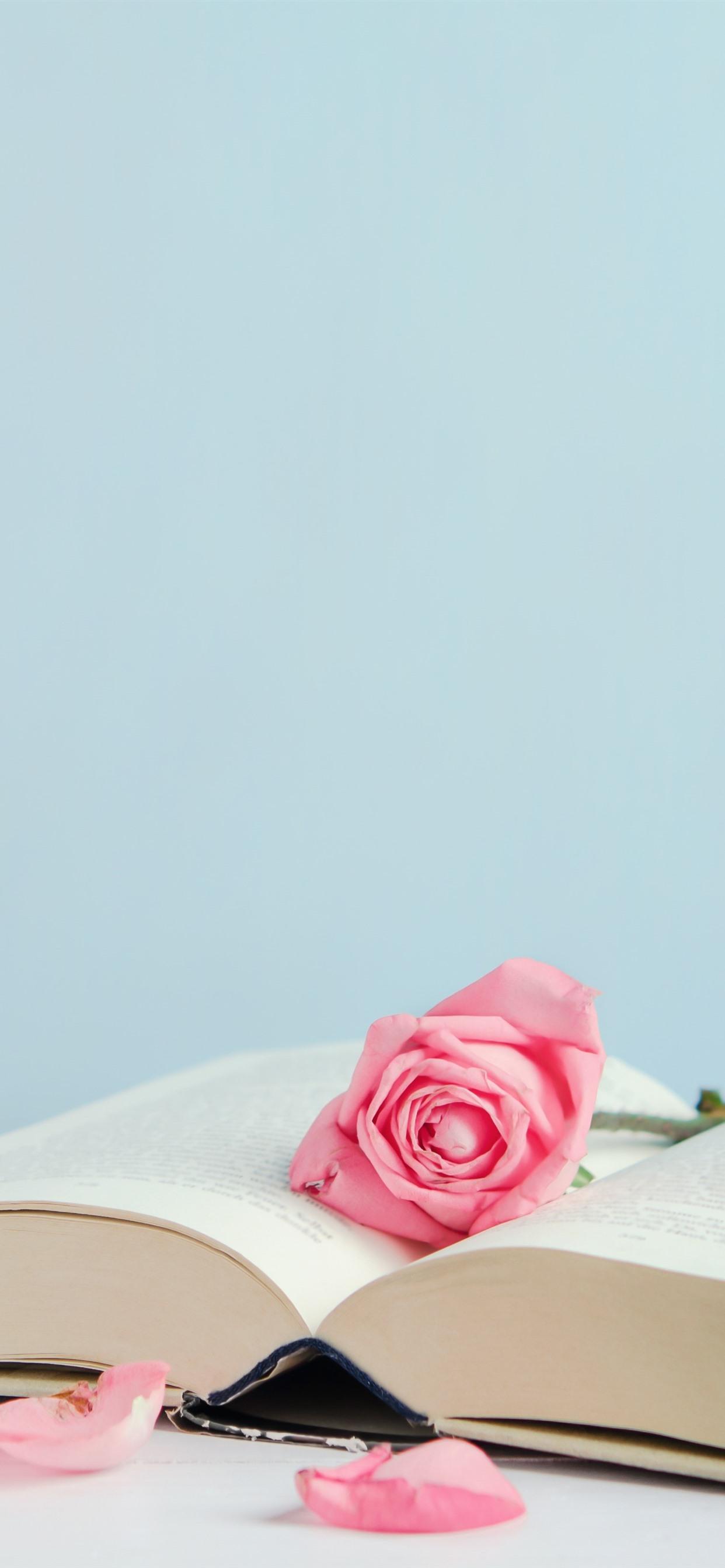 Book And Pink Roses Petals 1242x2688 Iphone Xs Max