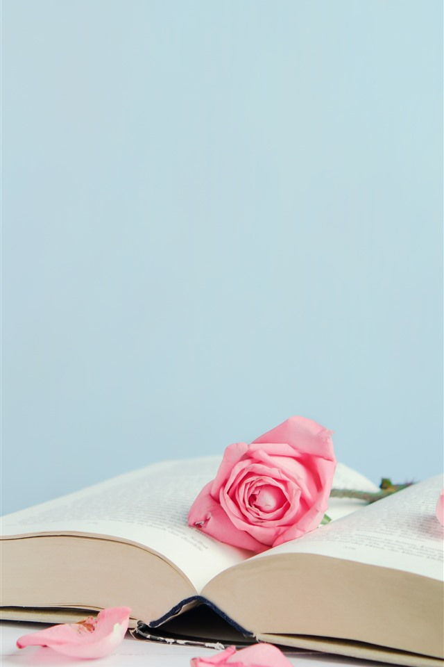 Book And Pink Roses Petals 1242x2688 Iphone 11 Pro Xs Max Wallpaper Background Picture Image