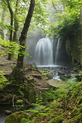 iPhone Fondos de pantalla Inglaterra, Derbyshire, Peak District, cascada, bosque