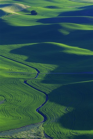 iPhone Fondos de pantalla Campos de trigo verde, río, hermosos paisajes, Palouse, EE.UU.