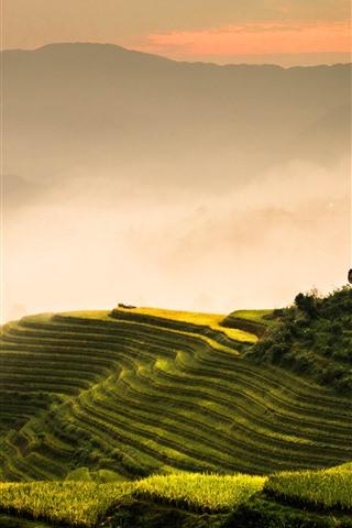 iPhone Fondos de pantalla Terrazas de arroz Longji, mañana, niebla, montañas, Guilin, China