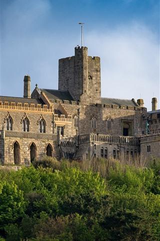 iPhone Fondos de pantalla Mont-Saint-Michel, fortaleza, árboles, cielo, Francia