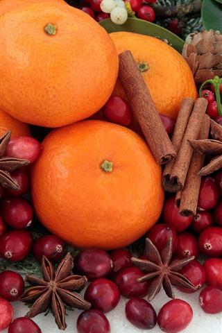 iPhone Fondos de pantalla Naranjas, canela, bayas rojas