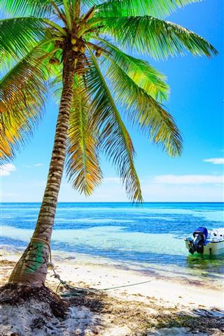 iPhone Hintergrundbilder Palmen, Strand, Boot, Meer, blauer Himmel, tropisch, Sommer