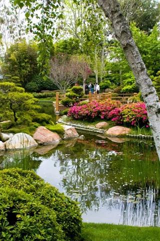 iPhone Wallpaper Park, trees, pond, stones, people