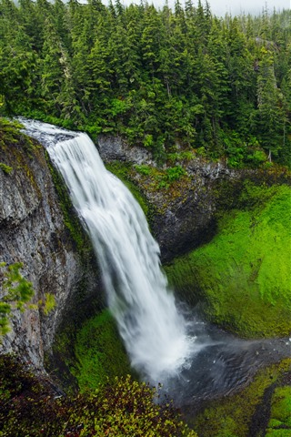 iPhone Wallpaper Salt Creek Falls, waterfall, trees, green, USA