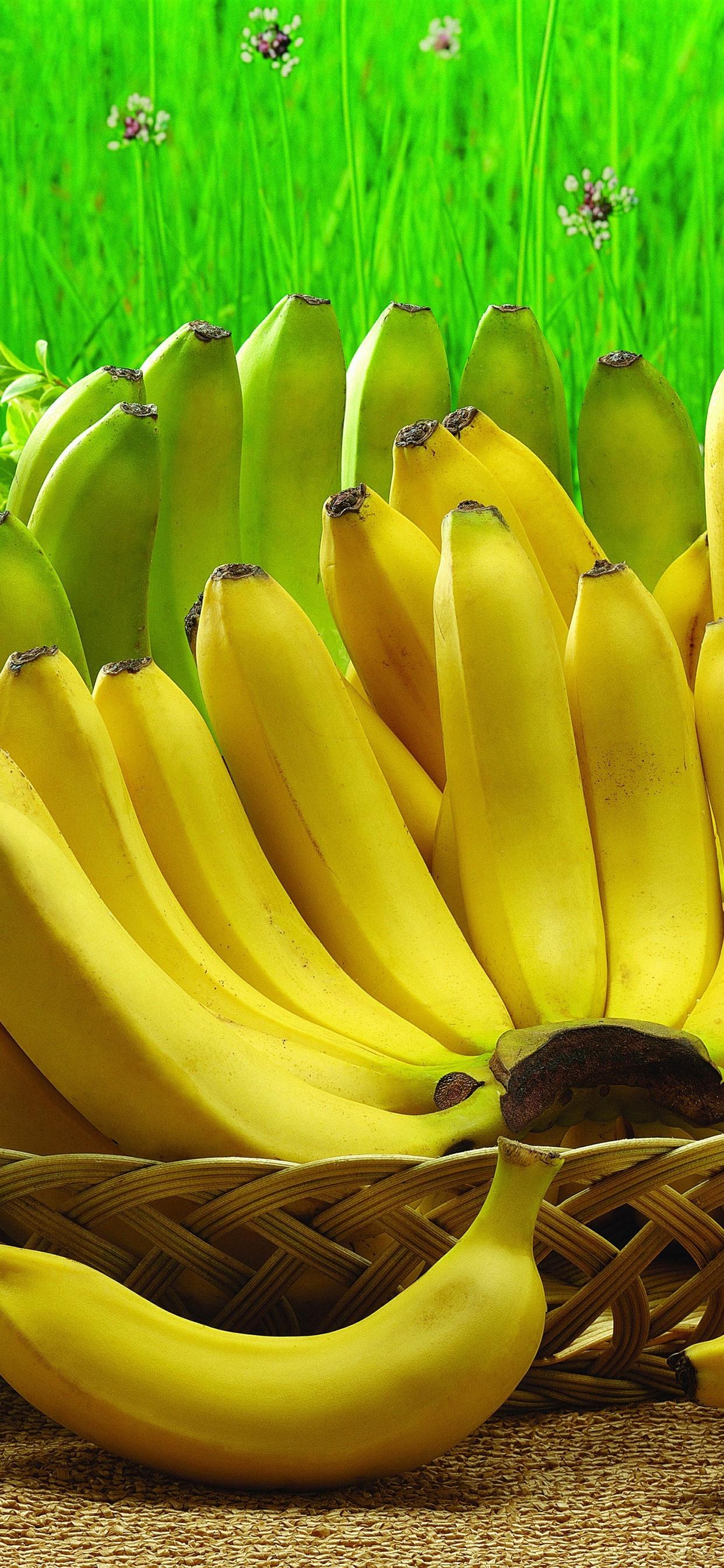 バナナ 果物 収穫 1242x2688 Iphone 11 Pro Xs Max 壁紙 背景 画像