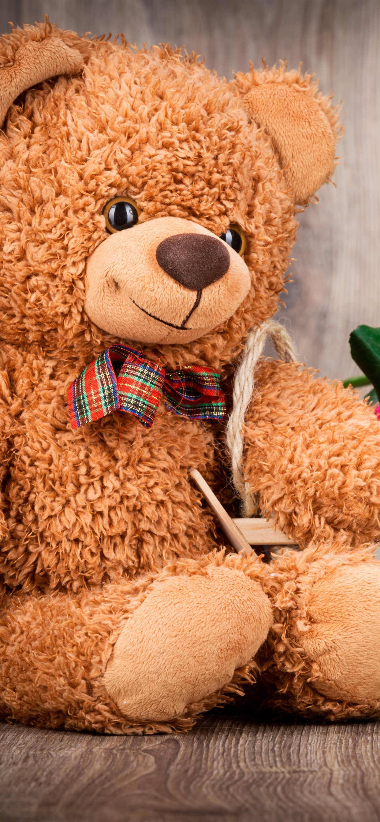 Teddy Bear And Colorful Roses Romantic 1242x2688 Iphone 11 Pro Xs