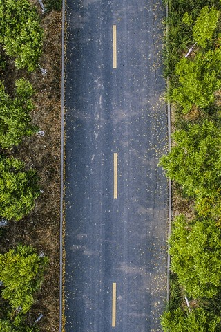 iPhone Wallpaper Top view, trees, road, autumn