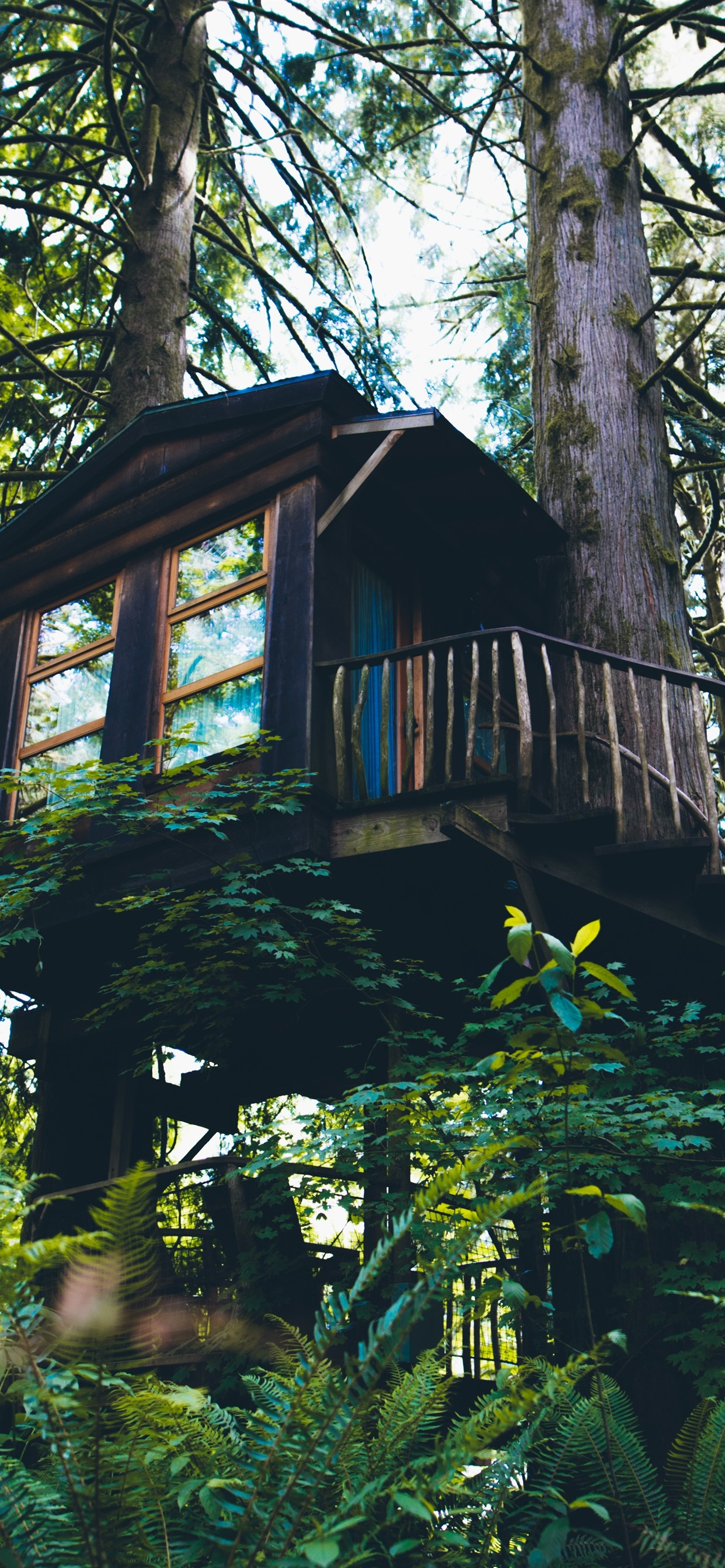 Tree House Forest Green 1242x2688 Iphone 11 Pro Xs Max Wallpaper Background Picture Image