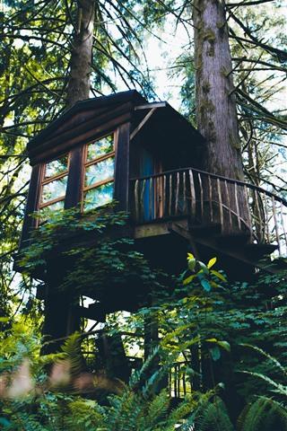 iPhone Fondos de pantalla Casa del árbol, bosque, verde.