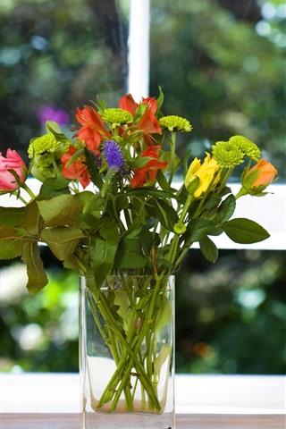 iPhone Fondos de pantalla Florero, flores, ventana