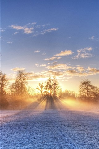 iPhone Wallpaper Winter, football ground, snow, trees, sun rays, morning