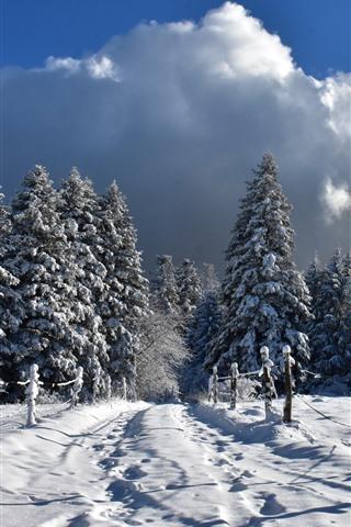 iPhone Fondos de pantalla Invierno, nieve espesa, valla, árboles, frío
