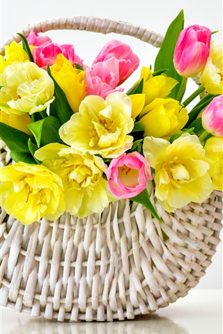 iPhone Wallpaper Yellow and pink tulips, basket, white background