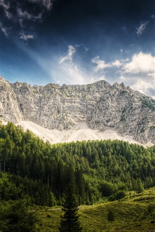 iPhone Wallpaper Austria, mountains, trees, hut
