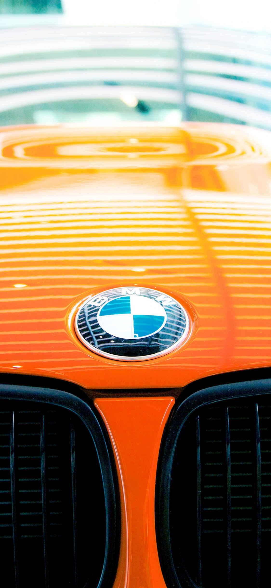 Bmw Logo Orange Car 1242x2688 Iphone 11 Pro Xs Max Wallpaper Background Picture Image