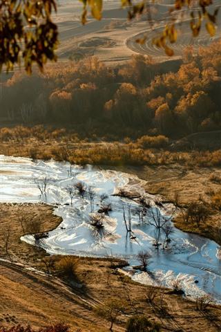 iPhone Fondos de pantalla Hermoso otoño, árboles, río, mañana, niebla.