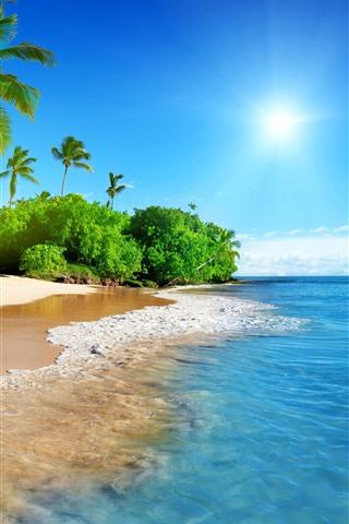 iPhone Papéis de Parede Bela praia, palmeiras, mar, sol, paisagens tropicais