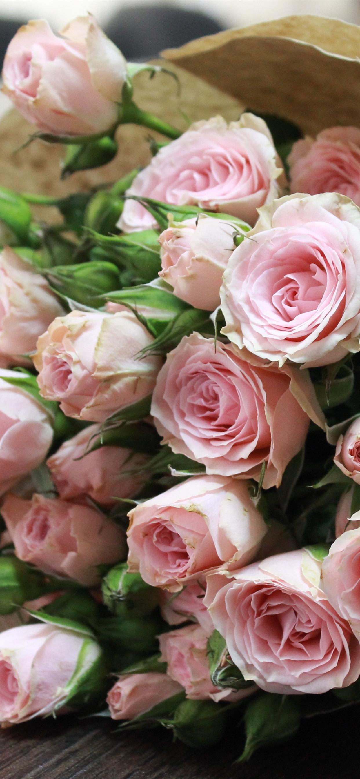 花束 花 ピンクのバラ 1242x2688 Iphone 11 Pro Xs Max 壁紙 背景 画像