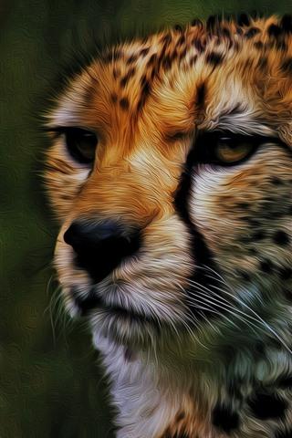 iPhone Fondos de pantalla Guepardo, cara, imagen artística