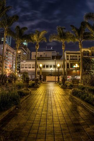 iPhone Fondos de pantalla Noche de la ciudad, casas, palmeras, luces, San Diego, Estados Unidos