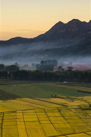 iPhone Wallpaper Countryside, golden fields, mountains, fog, morning