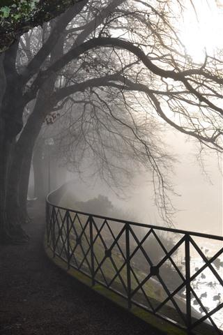 iPhone Wallpaper Dawn, river, fence, trees, fog, park