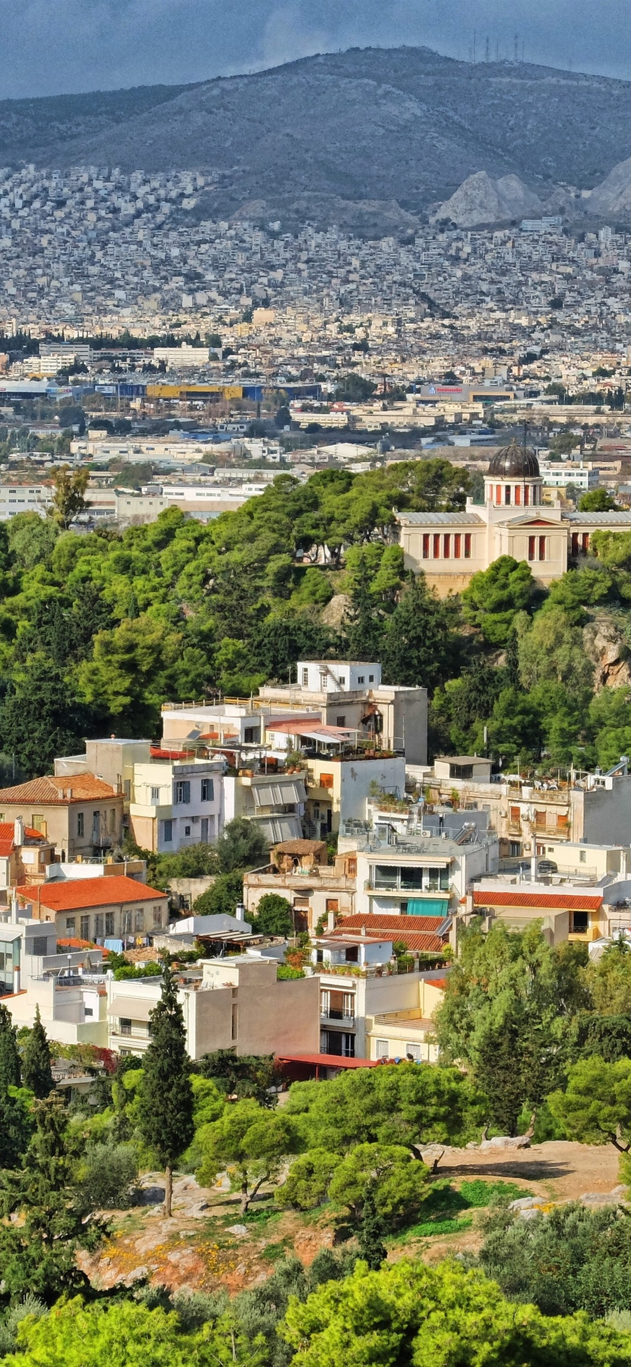 Greece City Houses Trees 1242x2688 Iphone 11 Pro Xs Max Wallpaper Background Picture Image