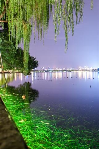iPhone Wallpaper Hangzhou West Lake, night, trees, green illumination, park, China