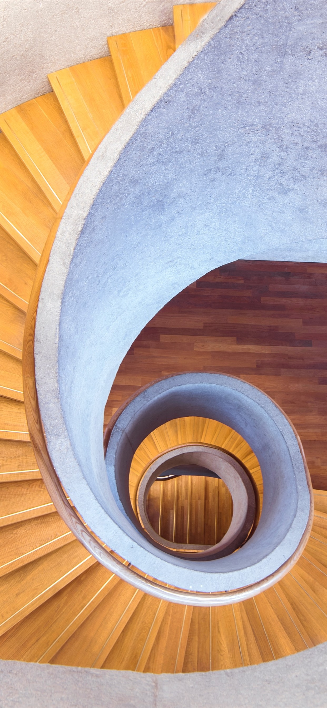 Interior Stairs Spiral 1242x2688 Iphone Xs Max Wallpaper
