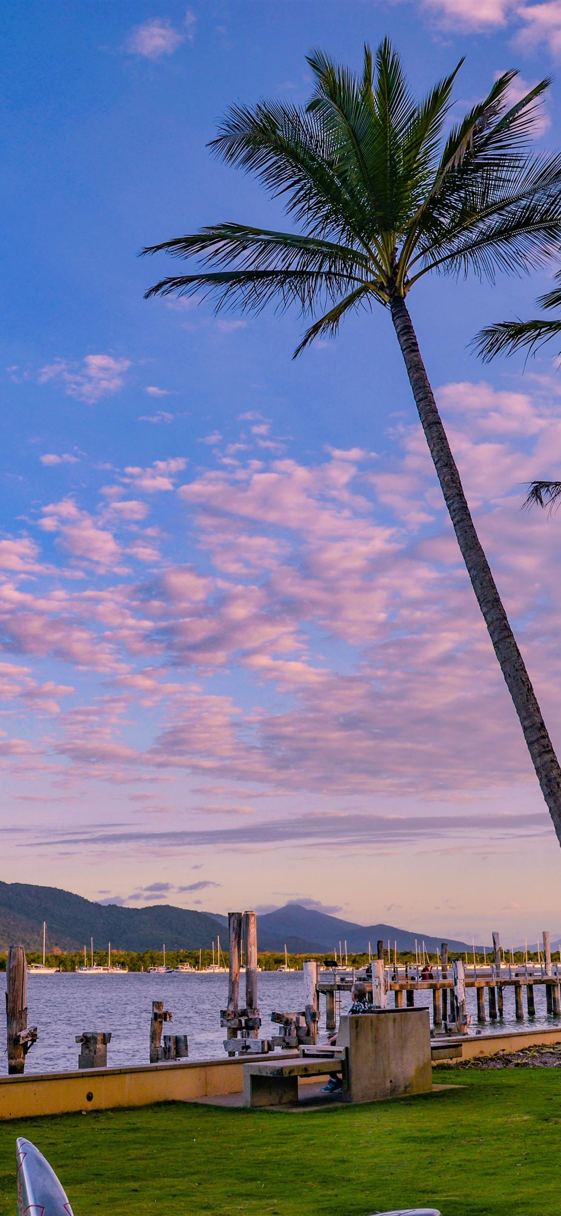 Kells Ireland Dusk Palm Trees Bay Clouds 1242x2688