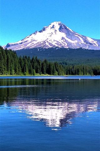 iPhone Обои Маунт-Худ, гора, деревья, озеро, отражение воды, США