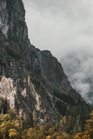iPhone Wallpaper Mountains, fog, trees, autumn, morning