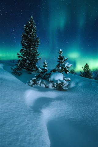 iPhone Wallpaper Northern lights, Norway, trees, snow, starry, night