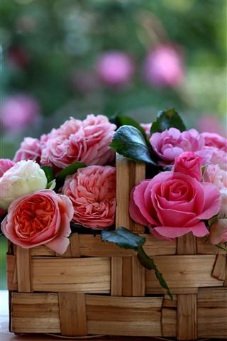 iPhone Fondos de pantalla Una cesta de rosas, flores, fondo nebuoso