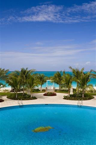 iPhone Fondos de pantalla Palmeras, piscina, Resort, tropical