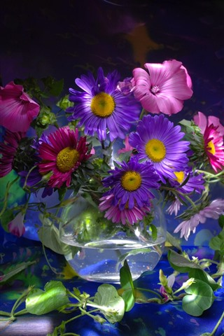 iPhone Wallpaper Purple and pink asters, glass pot