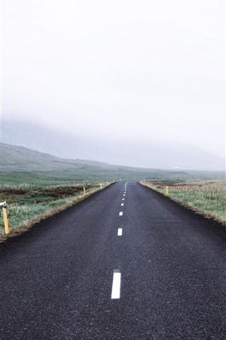 iPhone Fondos de pantalla Carretera, campos, cerros, ovejas, mañana, niebla.