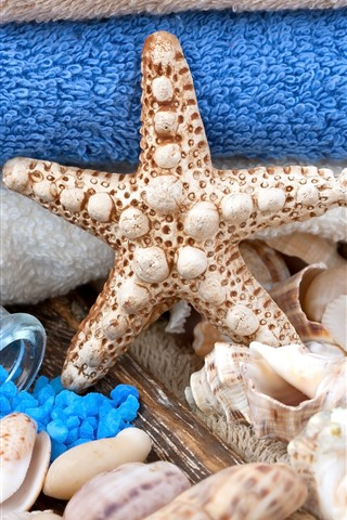 iPhone Wallpaper SPA theme, starfish, bath salt, shells, towel