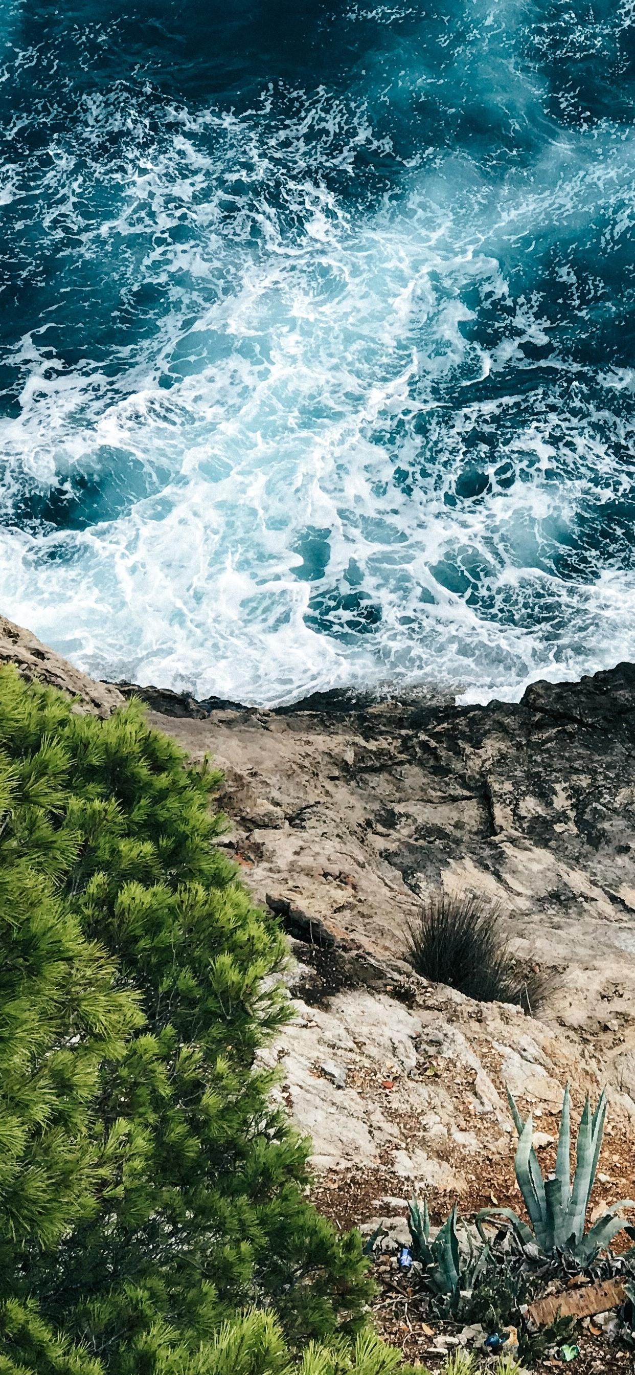 Sea Foam Coast Grass 1242x2688 Iphone Xs Max Wallpaper