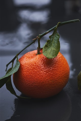 iPhone Fondos de pantalla Dos mandarinas, gotas de agua