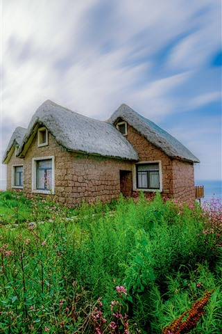 iPhone Fondos de pantalla Flores silvestres, hierba verde, casa, mar, cielo azul, nubes