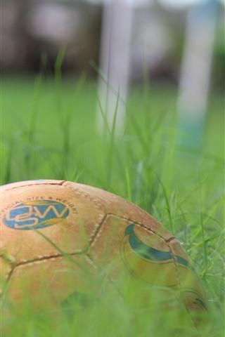 iPhone Wallpaper Football, green grass