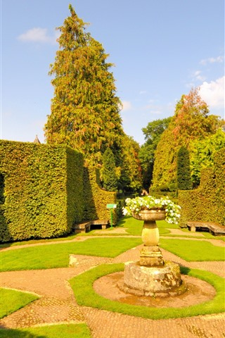 iPhone Wallpaper Garden art, yard, plants shape, trees, sunshine